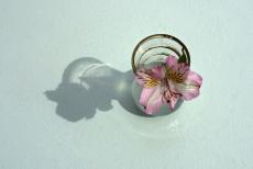 104. Victoria Flower.jpg