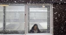 30. Rosedale Snow Lady.jpg
