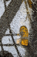 59. Yellow Foot and Shlush.jpg
