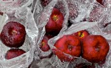 69. Frozen Apples.jpg