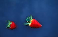 75. Tucson Strawberries.jpg